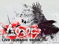 "Шоу ""Дозор. Live in magic show"""